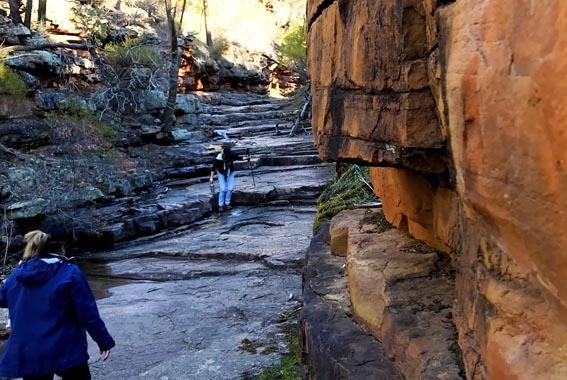 Flinders-ranges-walk-19