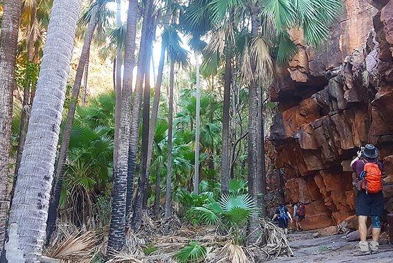 Kimberley-walk-Western-Australia-9