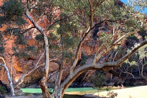 Larapinta-walk-Northern-Territory-14