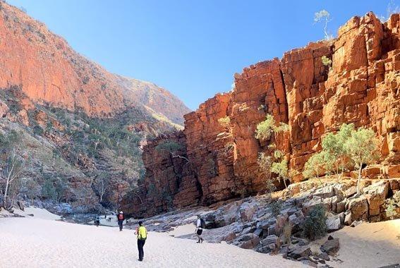 Larapinta-walk-Northern-Territory-3