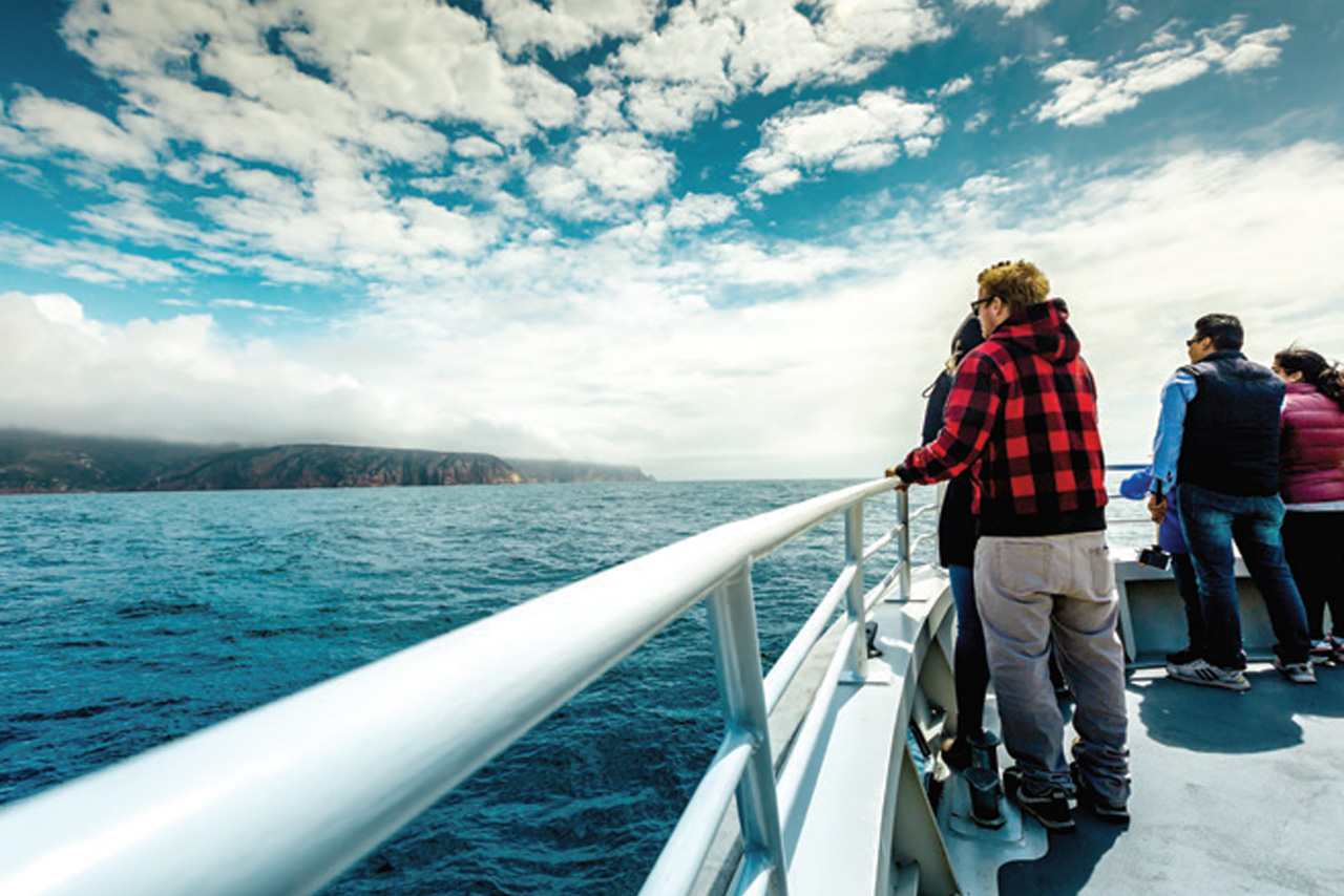 Wineglass Bay Cruises – Vista Lounge (Bring Your Own Lunch)