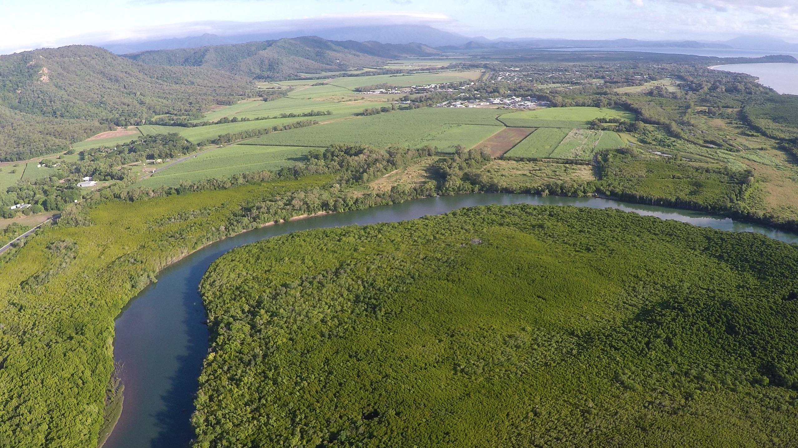 Fly and Cruise the Daintree River