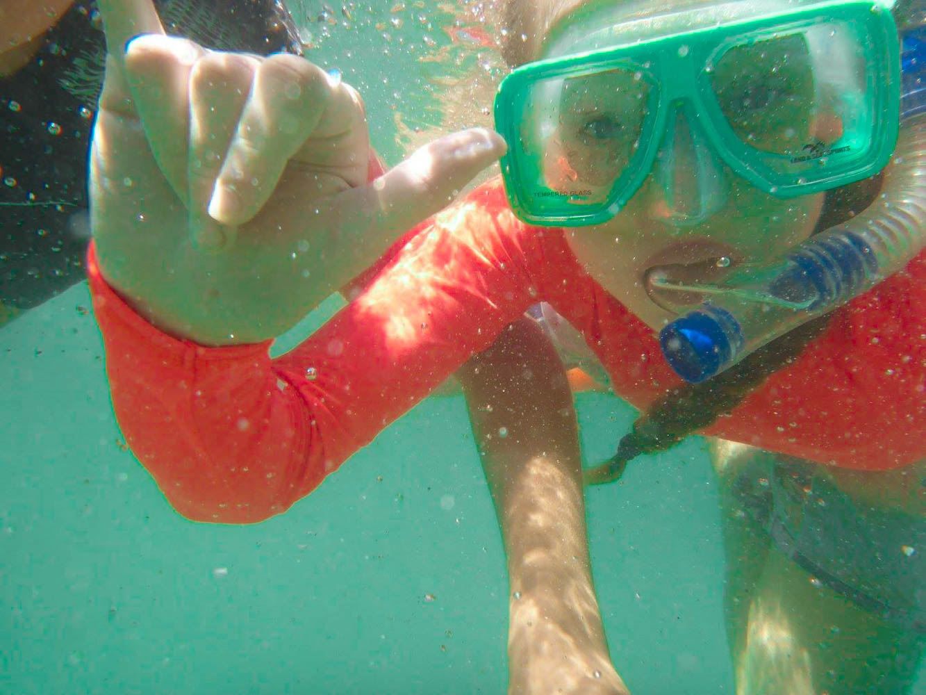 Snorkel, Surf and Sea Life on the Fleurieu