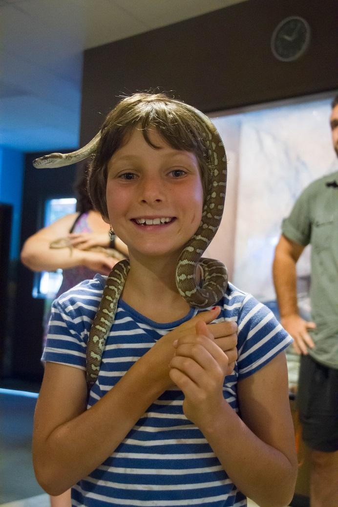 Big Croc Feed VIP Experience