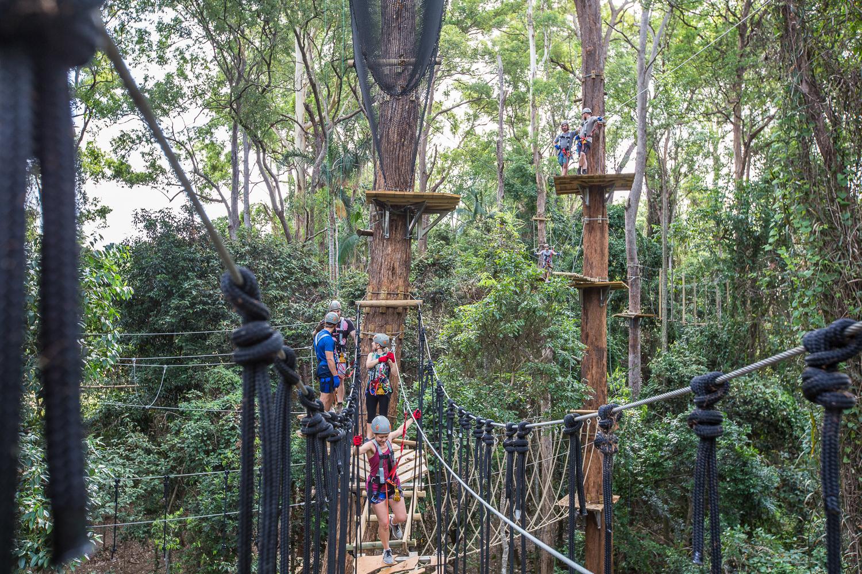TreeTop Challenge - Sunshine Coast