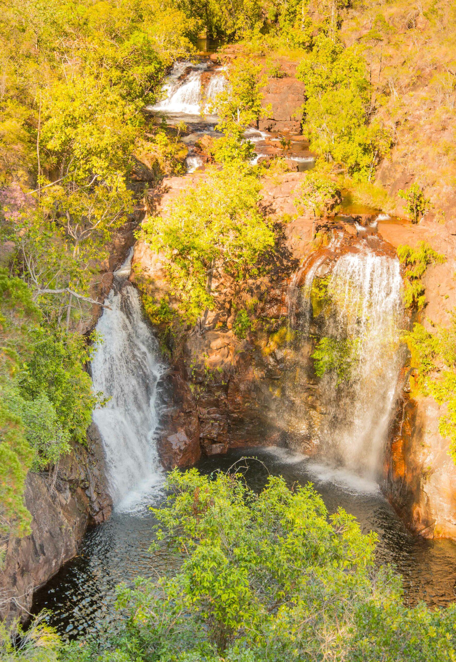 Litchfield National Park: 1-day Tour