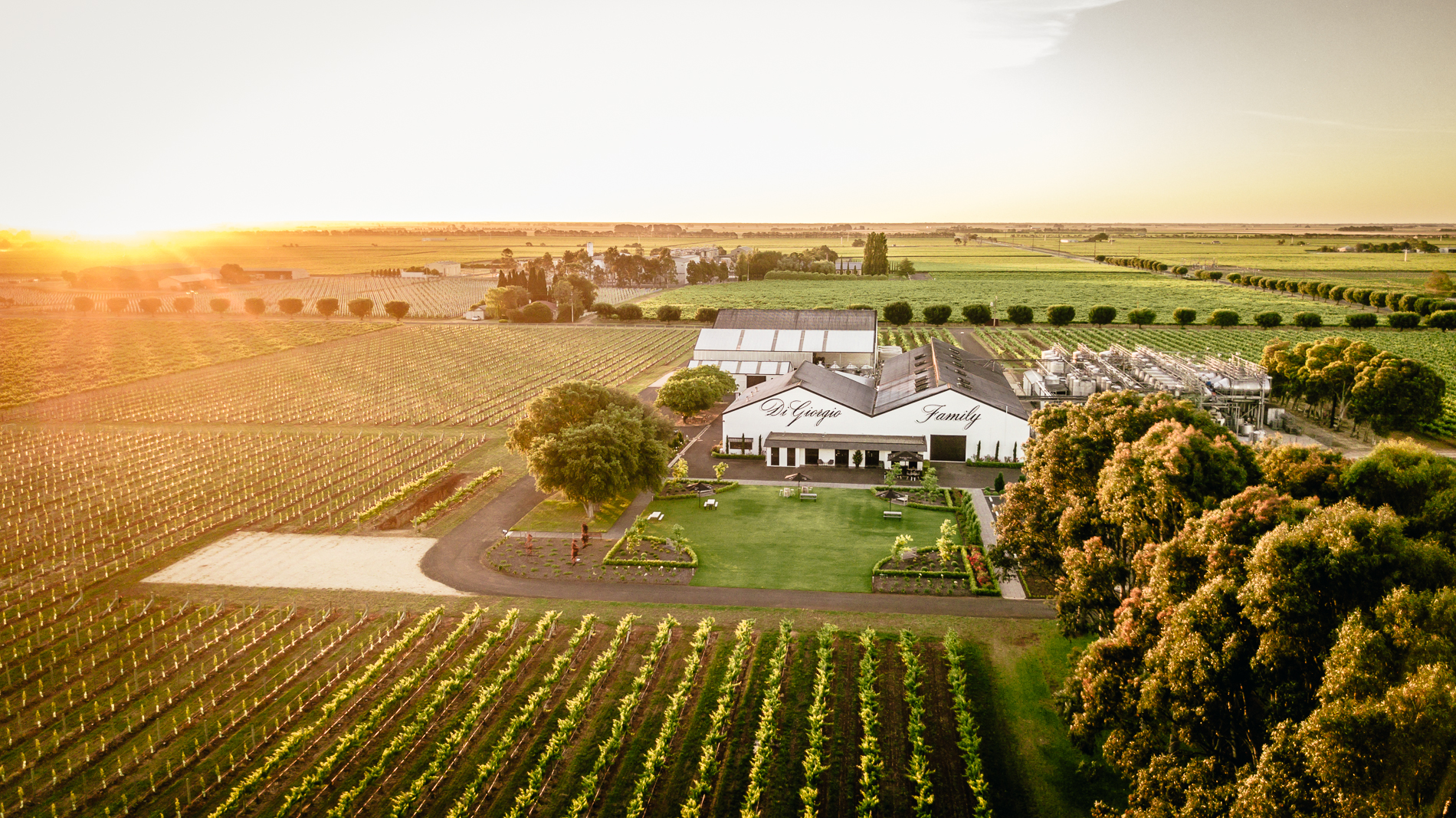 Tour and Private Tasting