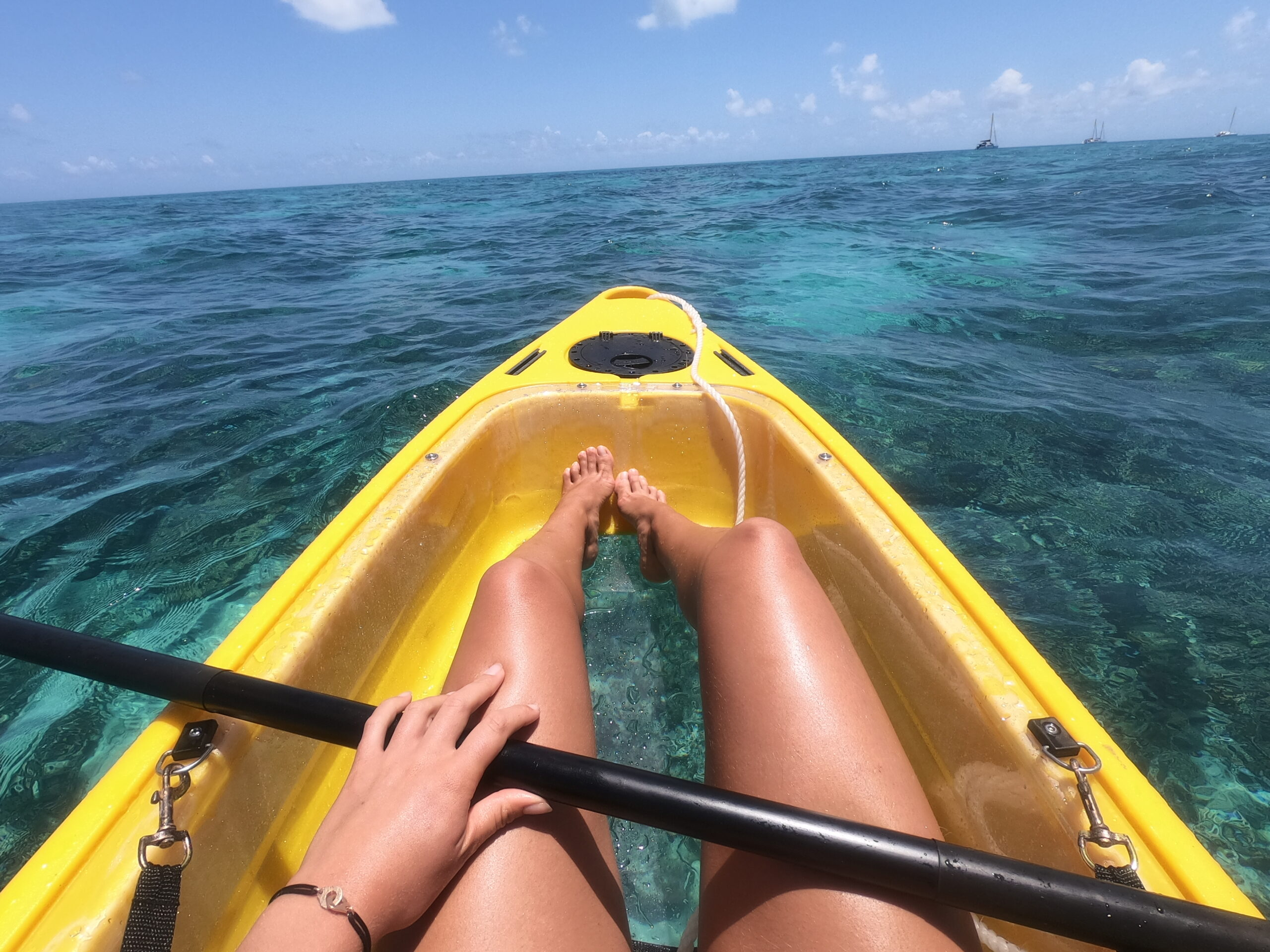Private Charter- Half day or full day- Sail Snorkel SUP & Kayak