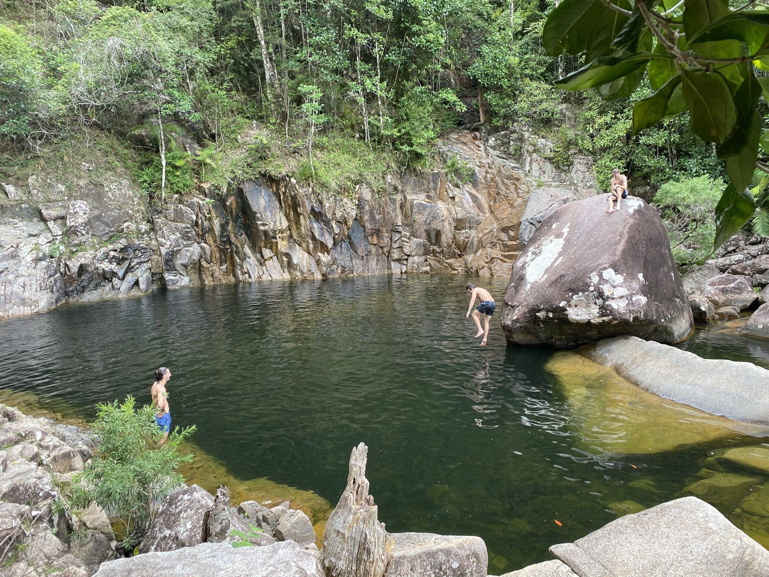 Chasing Waterfalls Full Day Tour - Departing Airlie Beach Daily