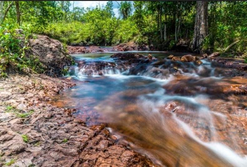 Kakadu-guided-walking-holiday-Northern-Territory-10