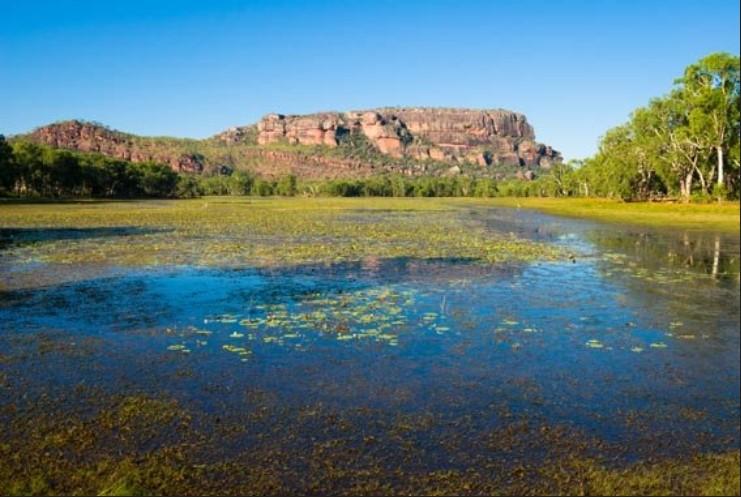 Kakadu-guided-walking-holiday-Northern-Territory-8