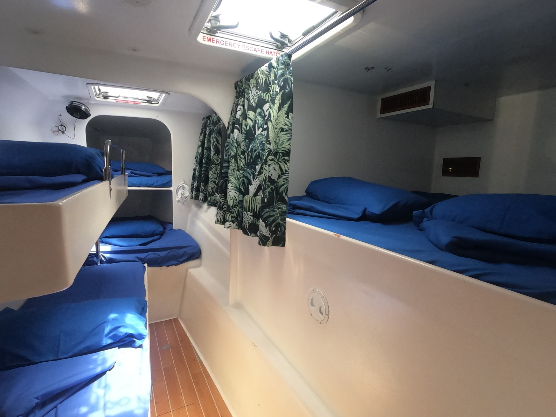 Wings Tour -  Retail Price 2021 -  2d2n Whitsunday Sailing - Hull half of a double berth