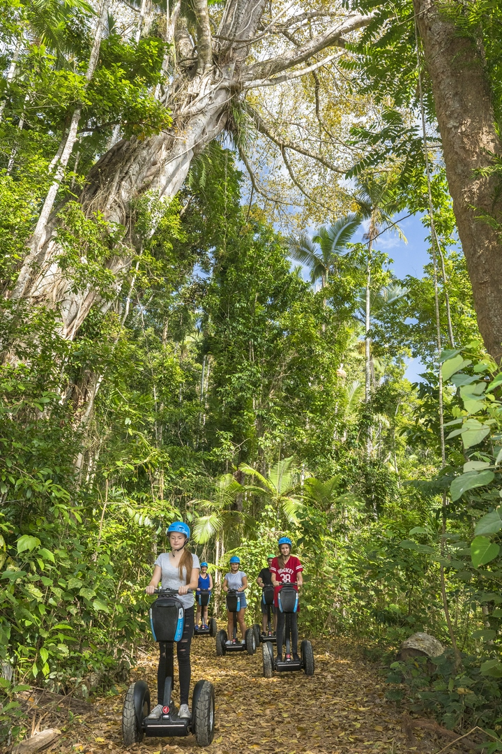 Segway Rainforest Discovery Tour