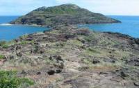 Cape York Thursday Island Daintree Rock Art Cairns Tour - 8 Days