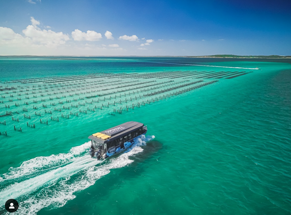 Experience Coffin Bay Oyster Farm and Bay Tour