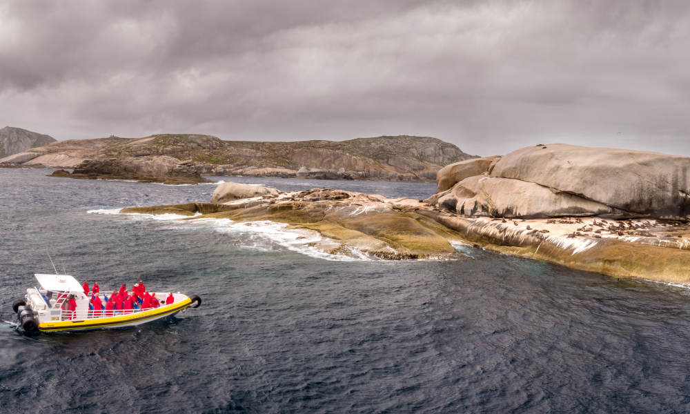 Wilsons Promontory Day Cruise