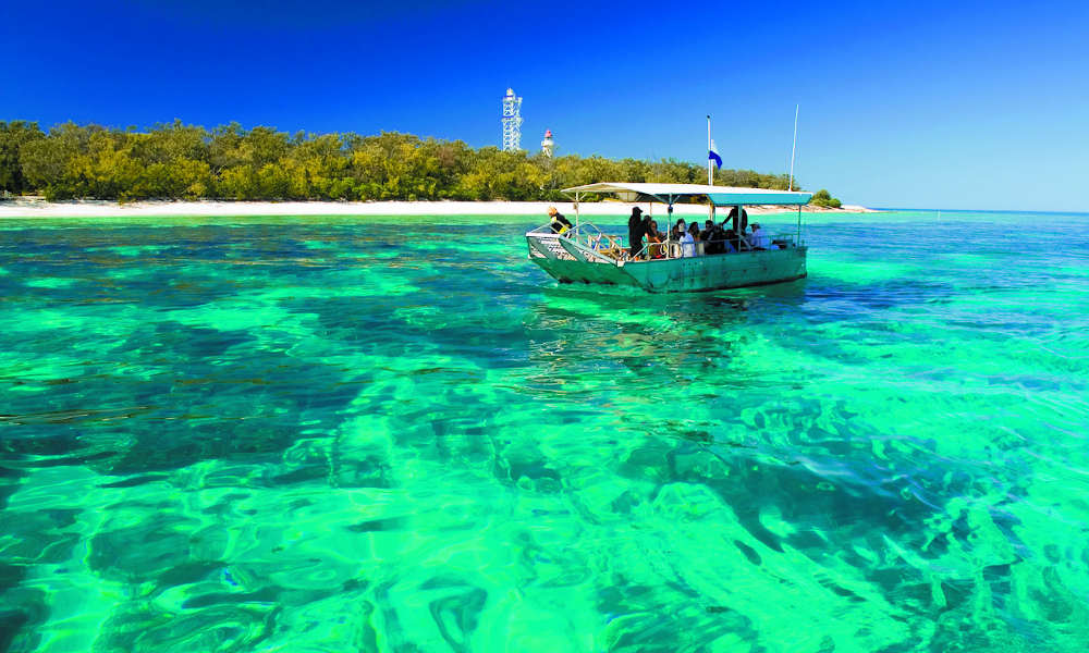 Great Barrier Reef Day Tour from Hervey Bay