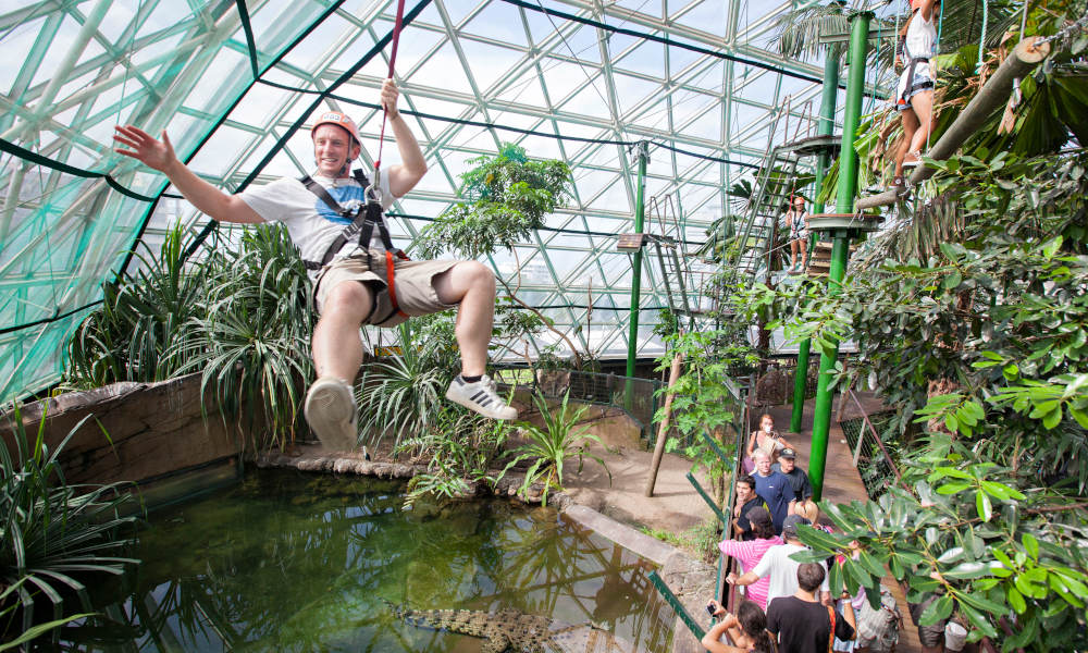 Cairns ZOOM and Wildlife Dome Entry Packages