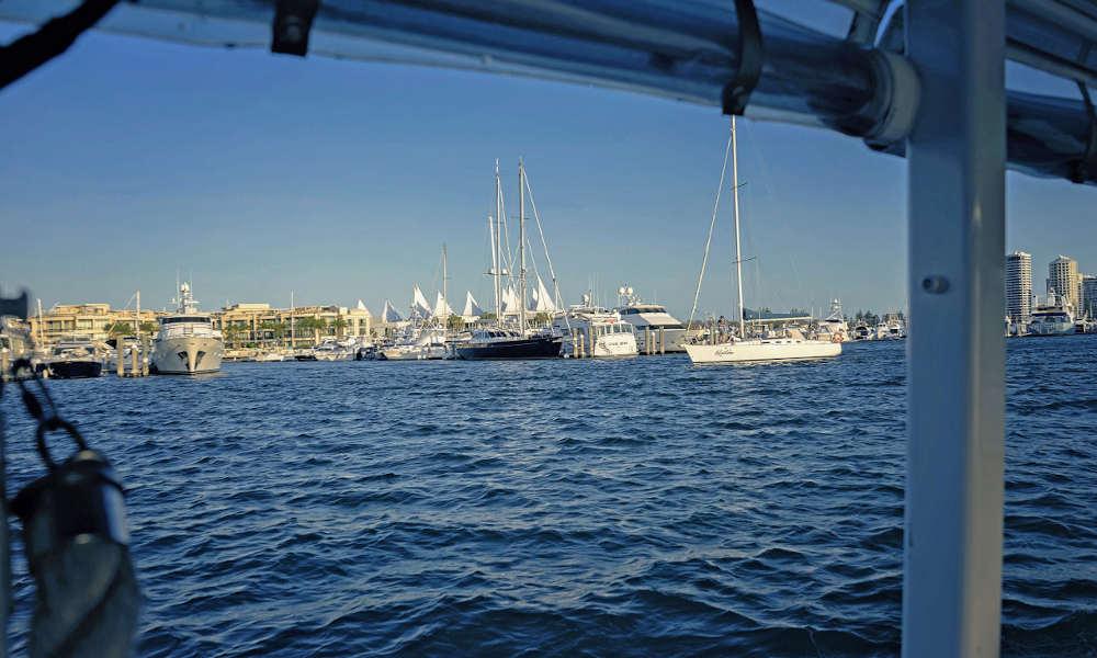 QuackrDuck Gold Coast City Tour and River Cruise