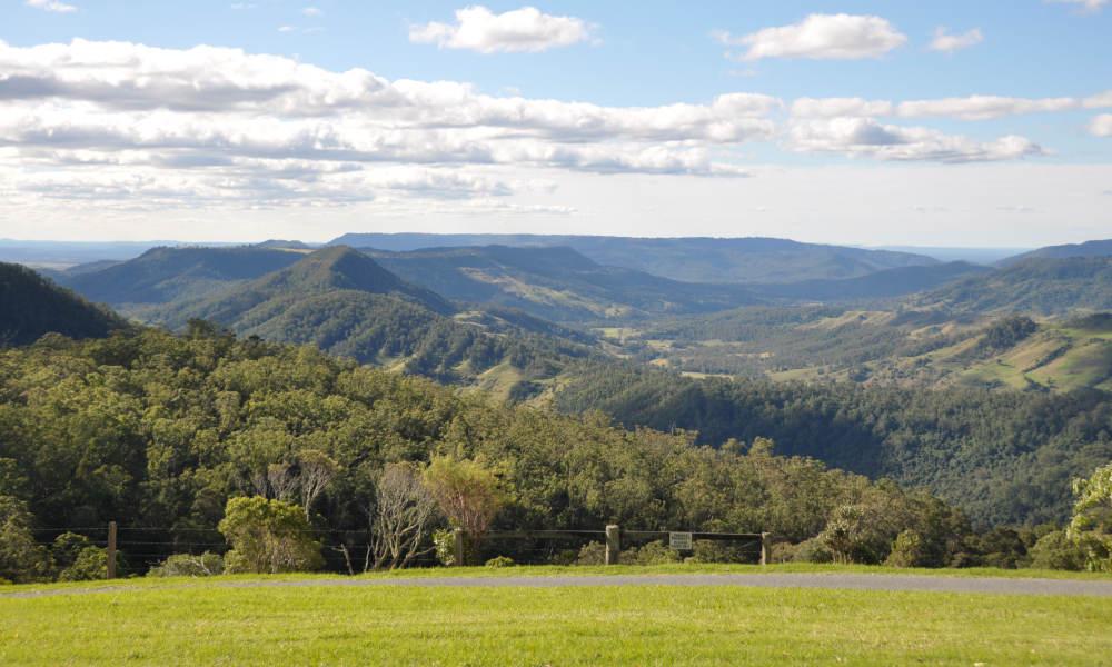 Tamborine Mountain And Gold Coast Tour From Brisbane