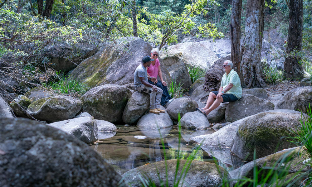 Half Day Afternoon Cultural Experience Of The Port Douglas Daintree Region