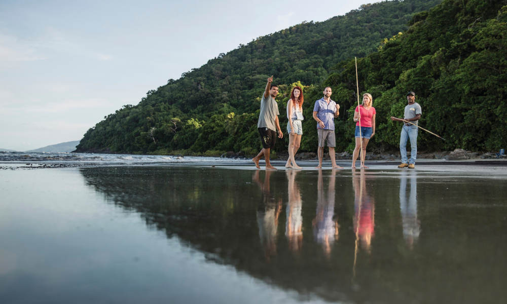 Full Day Private Cultural Experience Of The Port Douglas Daintree Region
