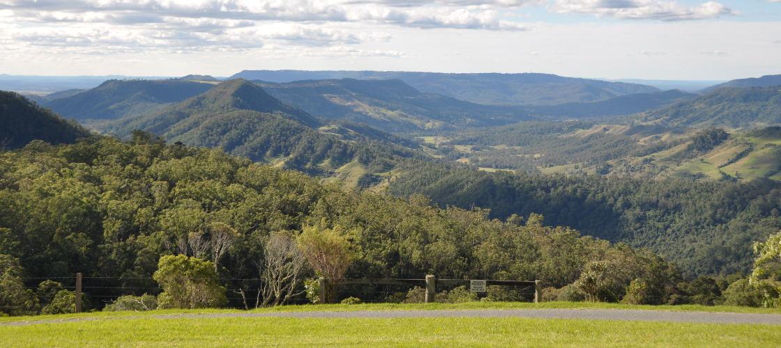 Full Day Tamborine Mountain and Lamington National Park Guided Tour