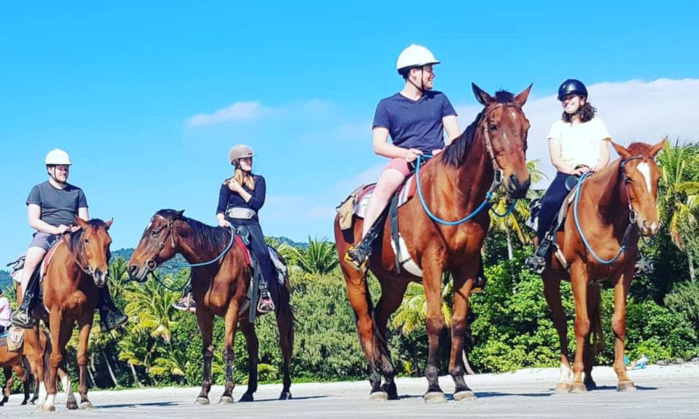 Mid-Morning Beach Horse Ride