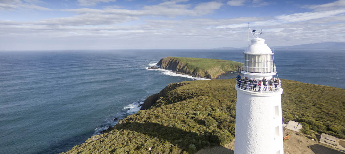 Bruny Island Sightseeing and Lighthouse Tour with Lunch
