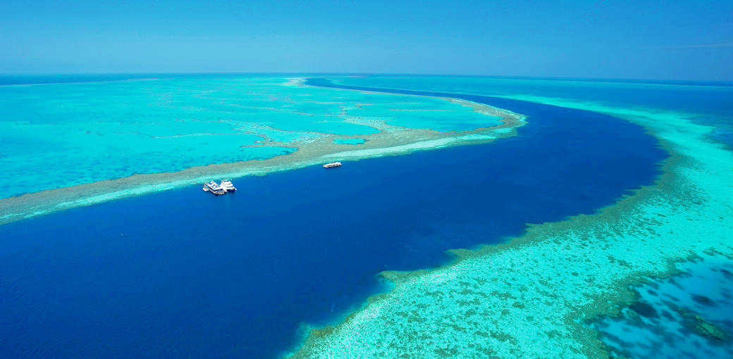 Great Barrier Reef Cruise to Hardy Reef Pontoon