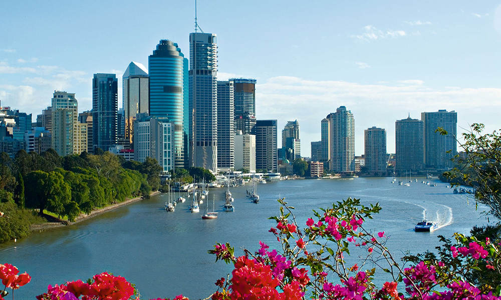 Brisbane City Sightseeing and Lone Pine Cruise departing Gold Coast