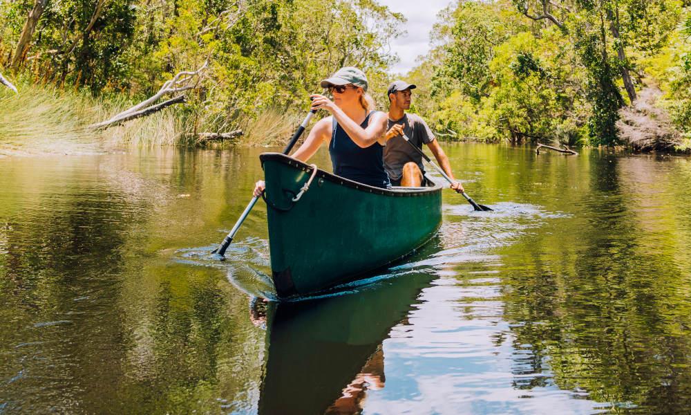 Noosa Everglades Afternoon Cruise