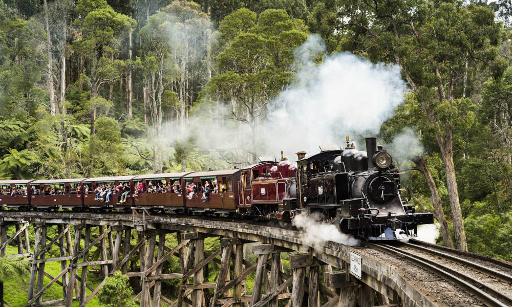 Puffing Billy and Dandenongs Half Day Tour