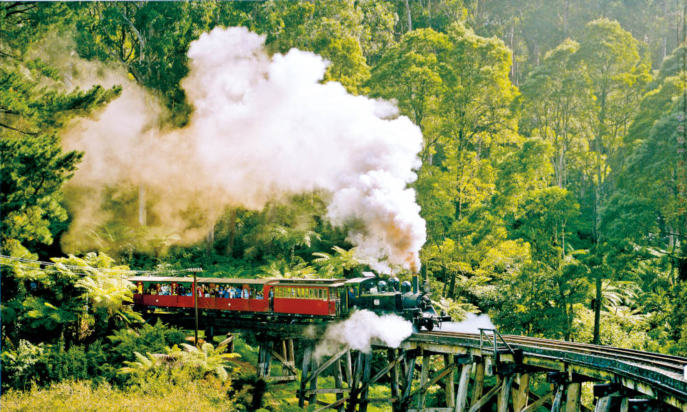 Puffing Billy and Yarra Valley Wineries Day Tour