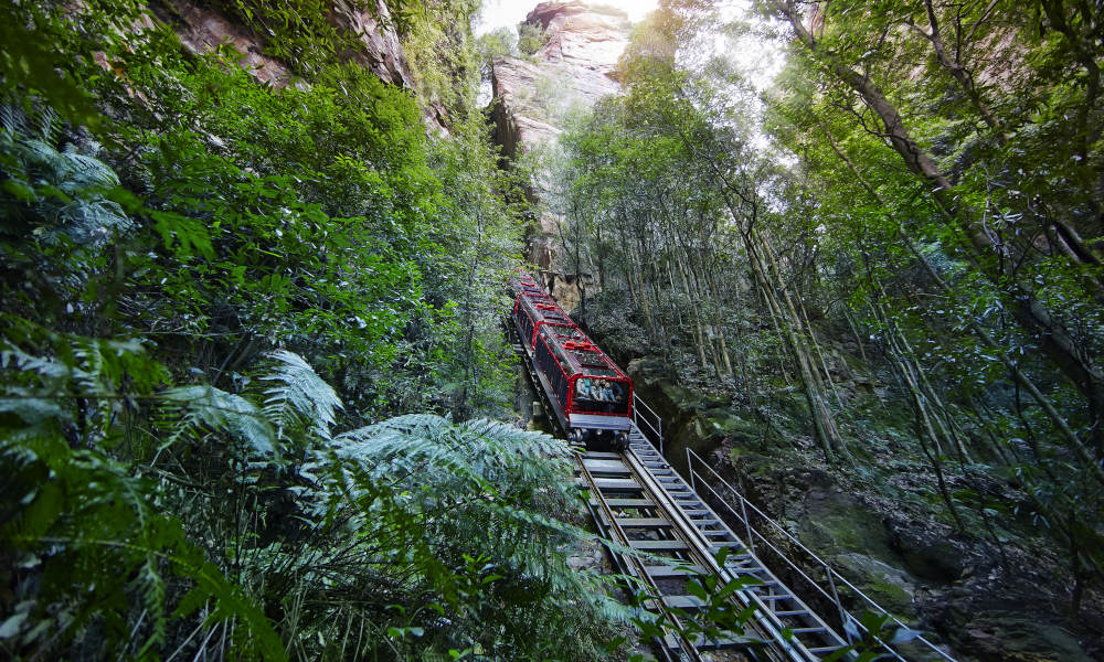 Blue Mountains & Sydney Day Tour with Harbour Cruise