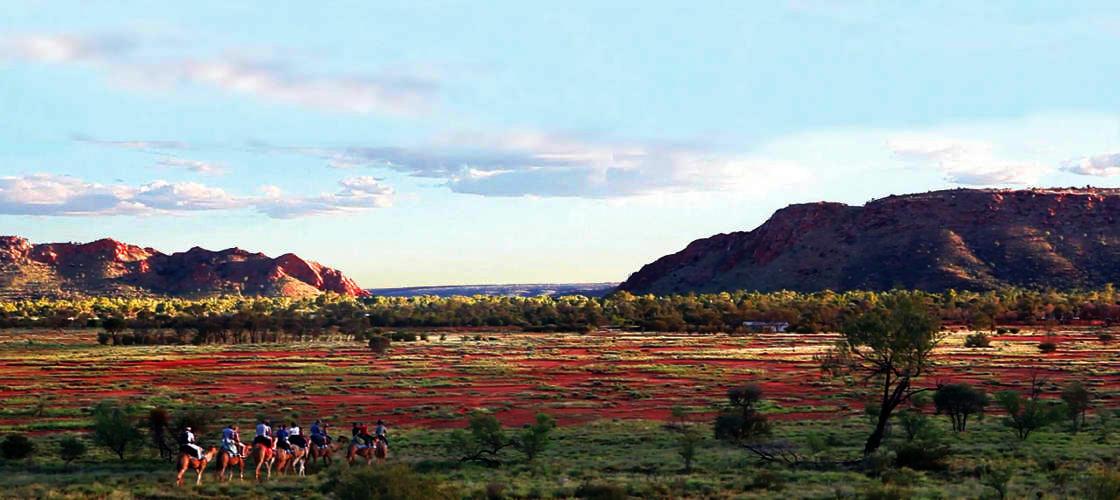 Alice Springs Sunset Camel Ride