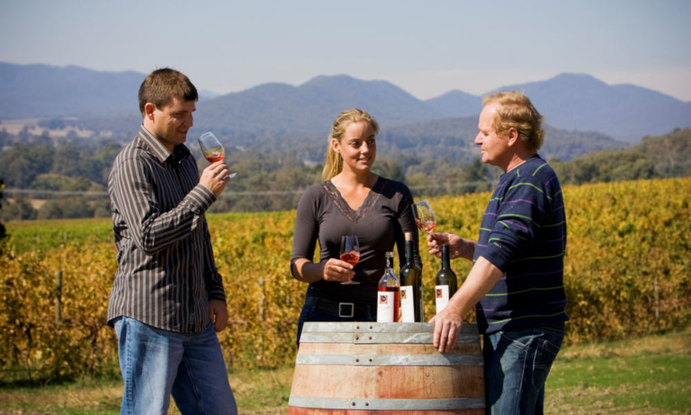 Pizzini Winery Food and Wine Tasting Tour