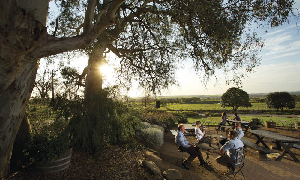 Barossa Valley Hop On Hop Off Tour with Transfers