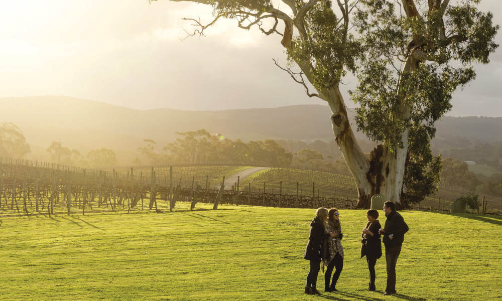 Adelaide Hills and Hahndorf Hop On Hop Off Tour with Transfers from Adelaide City