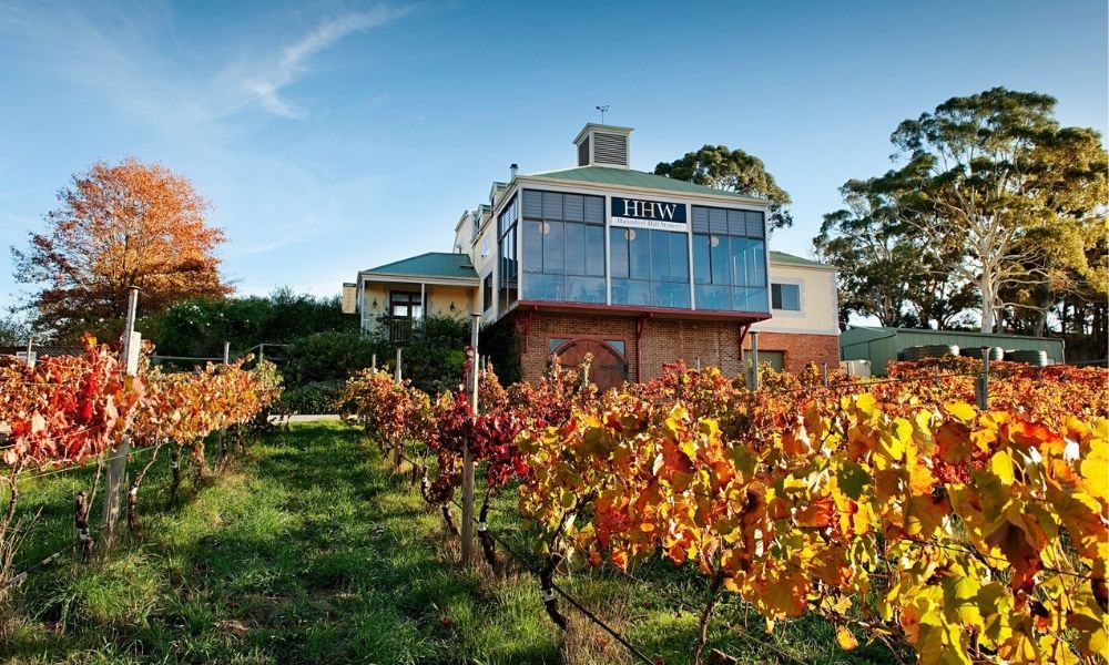 Adelaide Hills Wineries and Hahndorf Small Group Tour including Lunch