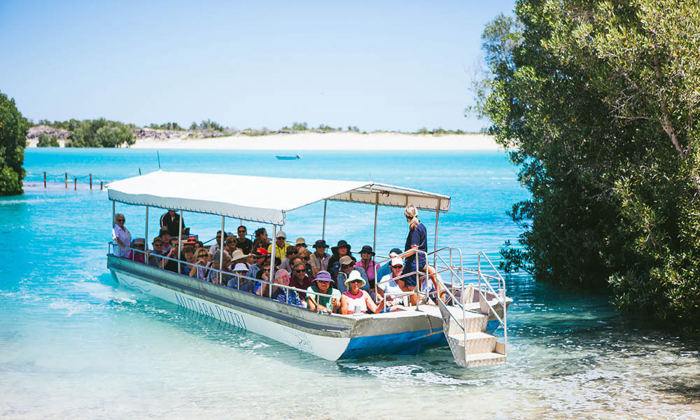 Willie Creek Pearl Farm Tour with Transfers from Broome