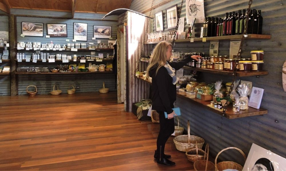 Kangaroo Island Full Day Tour from Adelaide including Lunch and Wine Tastings