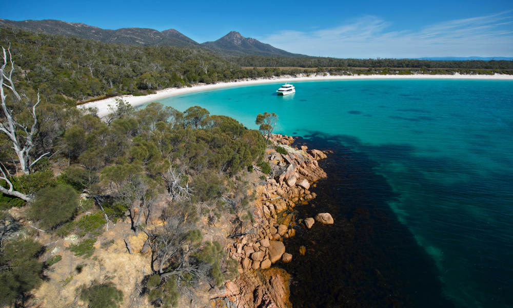 Bruny Island Wilderness Cruise and Bus Transfer from Kettering