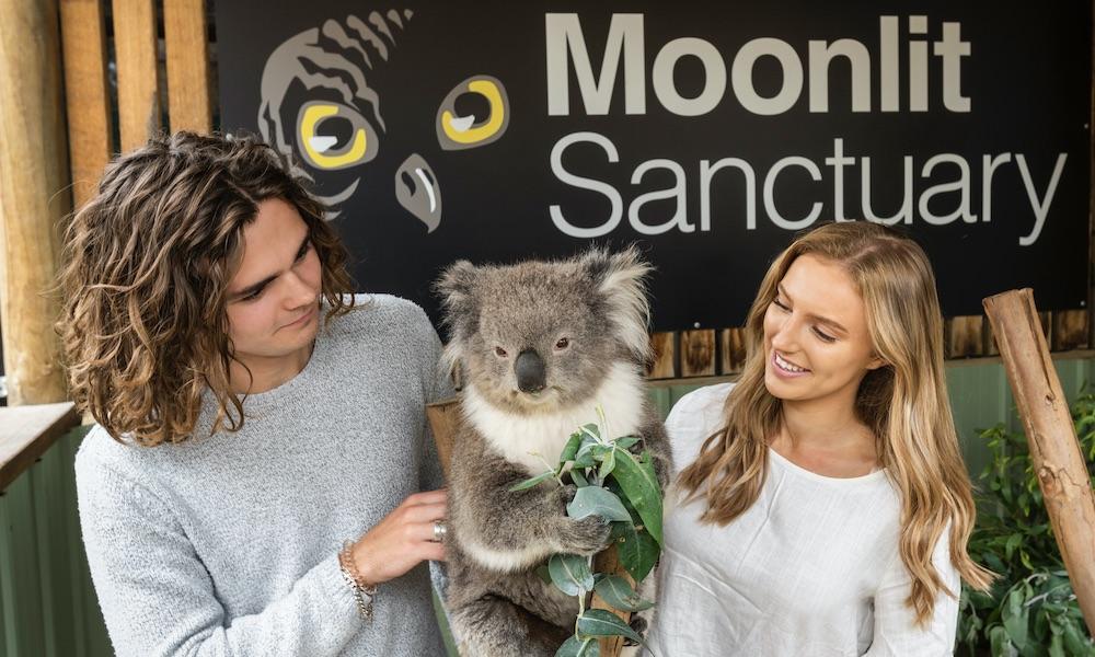 Moonlit Sanctuary Tickets