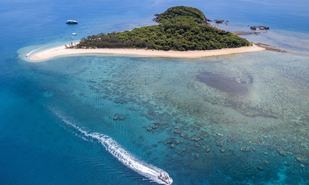 Frankland Islands Reef Cruise & Island Day Tour