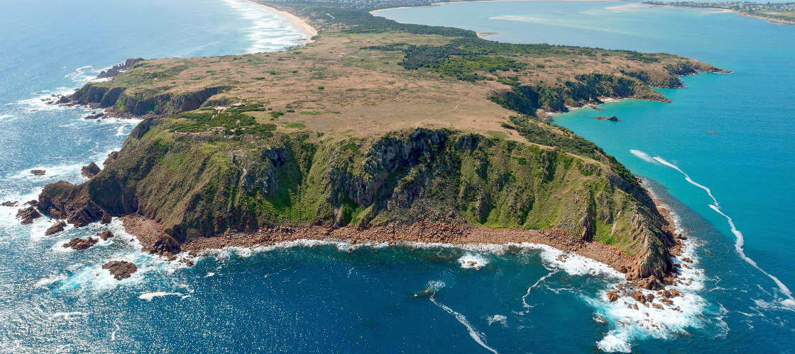 Phillip Island Cowes, Seal Rocks, Penguins & Grand Prix Circuit Helicopter Flight