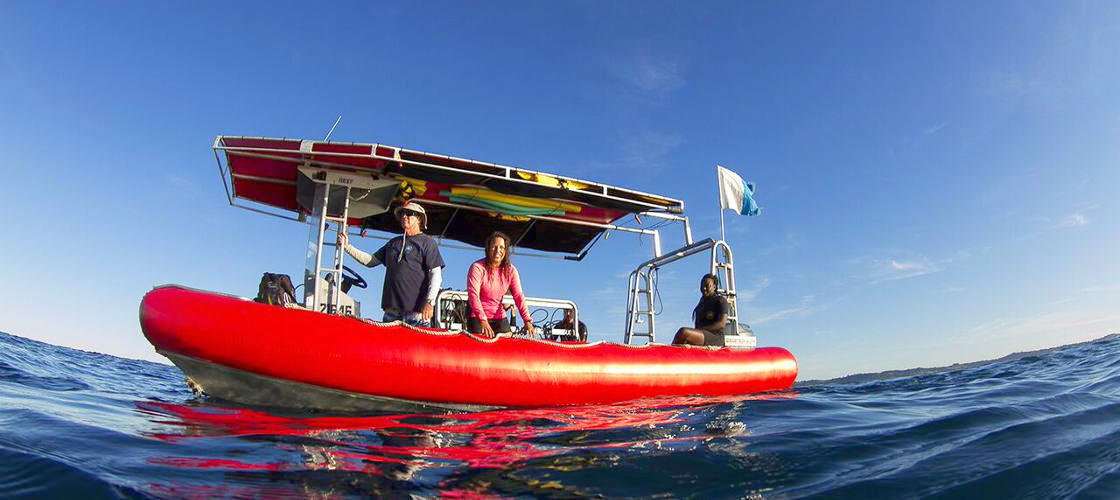 Scuba Dive Refresher Courses in Byron Bay