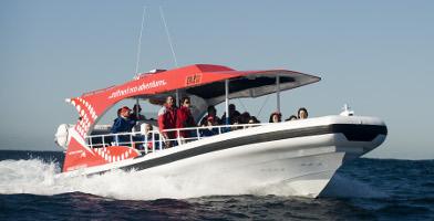 Rottnest Island Day Tour including Adventure Boat Tour