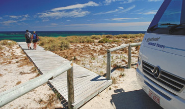 Rottnest Island Guided Bus Tour and Ferry Combo