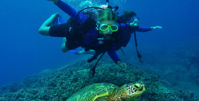 Introductory Scuba Dive Course in Byron Bay
